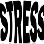 ¡Aprende a vivir libre de estrés!
