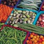 7 pasos para una dieta sana para nuestro intelecto.