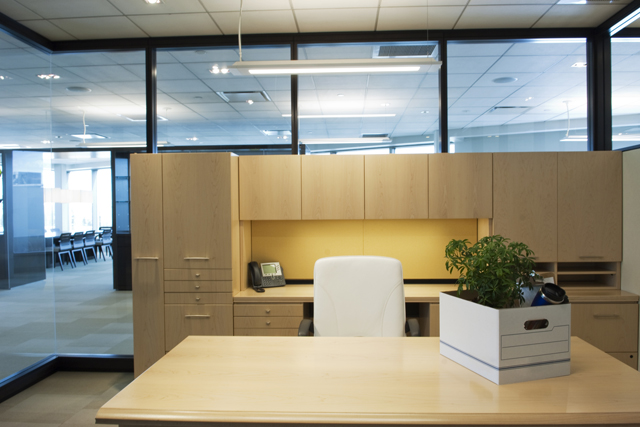 oficinas para emprendedores en los estados unidos 0800flor