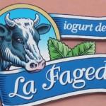 La Fageda: un ejemplo único de integración social