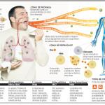 infoAH1N1