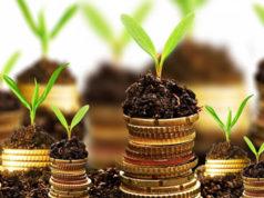 3 consejos para tener un negocio rentable