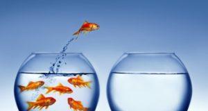 Pasos para crear tu propia empresa #Infografía