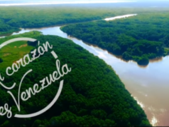 Mi corazón es Venezuela