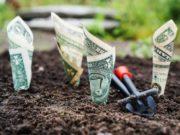 Una confiable guía para inversores de equity crowdfunding