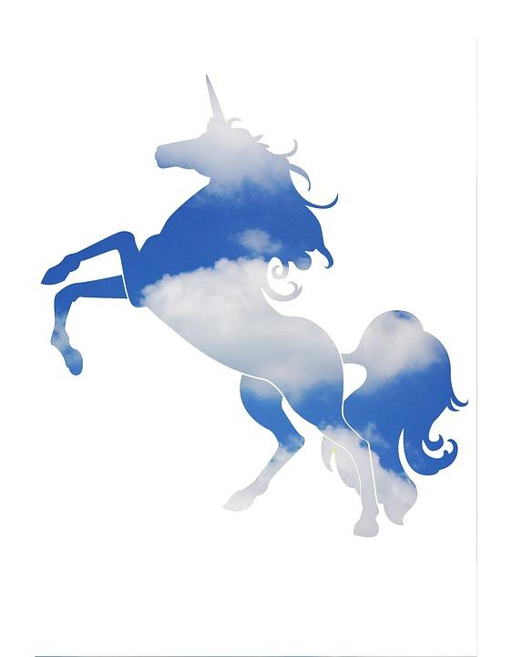 Nueva tendencia conoces el unicornio digital