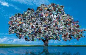 No te pierdas esta beneficiosa iniciativa ecológica