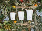 Reduce, Reuse and Grow y su taza reciclable ¡Una excelente idea!
