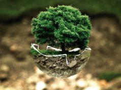Estas ideas de negocios ecológicos te encantarán ¡La 4ta es mi favorita!
