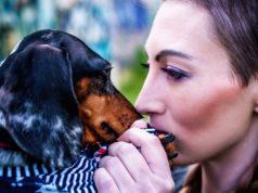 Sabías que tu perro puede detectar si una persona es buena