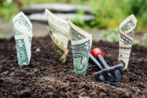 Al ahorrar dinero verás como aumentan tus ganancias poco a poco