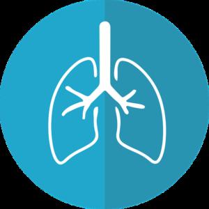 7 tips indispensables para unos pulmones sanos
