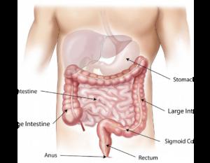 ¿Quieres mantener tu abdomen plano? Sigue estos tips