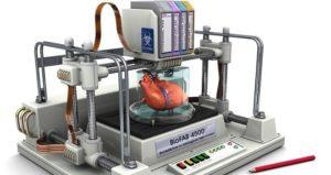 bioimpresion-3D-corazón