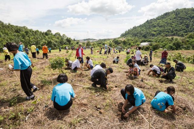 Cortesía: https://chapultepec.org.mx/filipinas-estudiantes-requisito-plantar-arboles-millones-reforestacion-mundo/